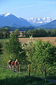 Mountainbike, Fuenfseenland, Sommer fully released