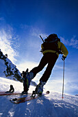 Man skitouring on ridge, rear view, NP Hohe Tauern, Austria