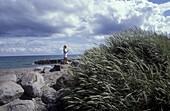 Beach, Skagen, Juetland Denmark