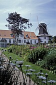 Windmill & Garden, Hojer, Juetland Denmark