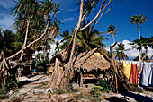 Haeuser und Waescheleine, Tarawa Kiribati