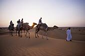Camel riding through desert, Al Maha Desert Resort, Dubai, UAE