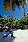 Schlaefchen unter Kokospalme, Aitutaki Lagune Cook-Inseln