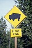 Bison Crossing Sign, Schild, bei West Yellowstone Montana, USA
