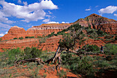 Hiker in the Palo Duro Canyon State Park, Texas USA