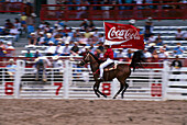 Cowboy, Rodeo, Coca-Cola Sponsor Flag, Cheyenne Frontier Days Rodeo , Wyoming USA