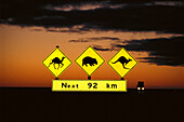 Road Signs at Sunrise, Eyre Highway SA, Australia