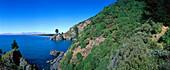 Pigeon Bay near Cloudy Bay, near Blenheim, Marlborough, South Island, New Zealand