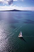 Aerial Photo, NZL-40 Yacht & Rangitoto Waitemata Harbour, Auckland, New Zealand