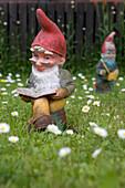 Reading garden gnome, Burghaun, Hesse, Germany