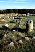 Viking Cemetery, Lindholm Hoje, Near Aalborg, Northern Jutland, Denmark