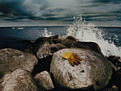 Rubber glove on a rock, Coastal landscape with stormy atmosphere, Henning Mankell, The Dogs of Riga, Kaseberga, Skane, Sweden