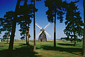 Windmill in Museum of agriculture, Alt-Schwerin, Mecklenburgian Lake District, Mecklenburg-Western Pomerania, Germany