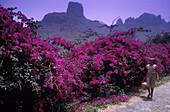 Berglandschaft bei Sao Jorghe, Santiago Kapverdische Inseln