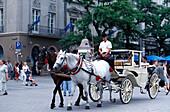 Horse Drawn Carriage, Cracow Poland