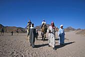Kamel-Trip, Wueste bei Hurghada Aegypten