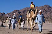 Camel ride in the desert, Hurghada, Egypt