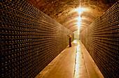 Bottles int he wine cellar, Penedes, Cava Cellar methode champagnoise, Freixenet, Sant Sadurni d'Anola, Catalonia, Spain