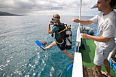 Diver jumping off the boat of Les Heures Saines Diving School, Bouillante, Basse-Terre, Guadeloupe, Caribbean Sea, America