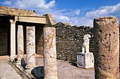 Ruins of Karthago, Roman Villa, Karthago, Tunisia, North Africa, Africa