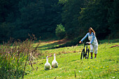 Woman pushing a mountain bike over a field, Two geese, St. Peters Valley, Jersey, Channel Islands, Great Britain