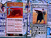 Plakate, Stierkampf, Conil de la Frontera, Cadiz Andalusien, Spanien