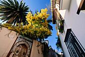 Carmen de la Media Luna, Cuesta de San Gregorio, lane, Albaycin, ancient Arab quarter, Granada, Andalusia, Spain