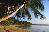 Woman climbing up a palm tree, Lakana Beach, Ste. Marie, Madagascar