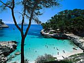 Küstenlandschaft bei Cala Mitjaneta, bei Cala Galdana Menorca, Spanien