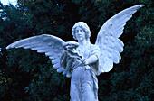 Angel, Bocognano, Corsica, France