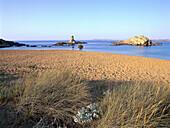 Beach with marram grass in the evening light, Cala Pregonda, Minorca, Balearic Islands, Spain