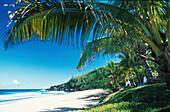Beach Grande Anse, La Réunion Island, Indian Ocean