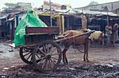 Coach, plastic tarpaulin, monsoon, near Muzaffarpur, Bihar, India
