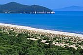 Deserted Beach, Parco Naturale di Maremma Tuscany, Italy