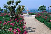 Boboli Garden, Palazzo Pitti, Florence, Tuscany, Italy