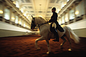 Spanish Riding School, Vienna, Austria