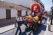 Pilgrim with oxcart on a sunlit street, Romeria de San Isidro, Nerja, Costa del Sol, Malaga province, Andalusia, Spain, Europe