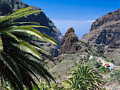 Masca Gorge, Masca, Teno mountains, Tenerife, Canary Islands, Spain