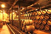 Wooden barrels in wine cellar of Bodegas Muga, Haro, La Rioja, Spain
