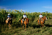 Gauchos, horseback riding, Esteros del Iberá, Corrientes, Argentinien