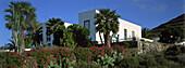 Haus mit Palmen, Yaiza, Lanzarote Kanarische Inseln