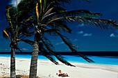 Strand, Bonaire Karibik