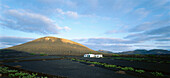 Country house, volcanic landscape, vineyard, La Geria, Lanzarote, Canary Islands, Spain