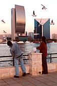Men feeding gulls at Dubai Creek, Dubai, UAE, United Arab Emirates, Middle East, Asia