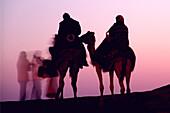 Tourist camel ride, Dubai, UAE