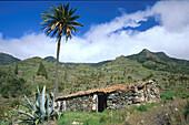 Bechijigua valley, La Gomera, Canary Islands, Spain