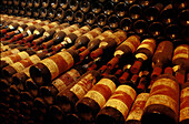 Weinkeller des Weinguts, Castello di Monsanto, Chianti Toskana, Italien