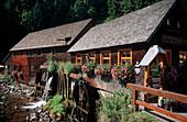 Old Mill, Wildgutach, Black Forest, Baden-Wuerttemberg, Germany