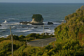 View of the Highway 6 at the West Coast, Tasman Sea, South Island, New Zealand, Oceania