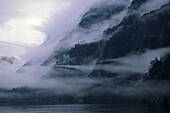 Morning mist on Doubtful Sound fiord, Fiordland National Park, South Island, New Zealand, Oceania